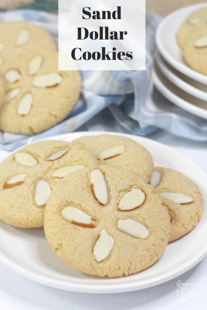 sugar cookies that look like sand dollars